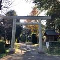 Photos: 二宮神社(あきる野市)北鳥居