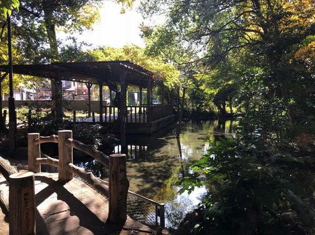 Photos: 二宮神社(あきる野市)お池
