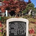 大悲願寺(あきる野市)