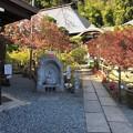 Photos: 大悲願寺(あきる野市)