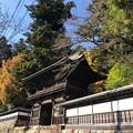 Photos: 大悲願寺(あきる野市)仁王門(楼門)