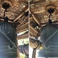 Photos: 大悲願寺(あきる野市)梵鐘