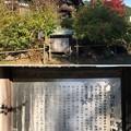 大悲願寺(あきる野市)大玄関