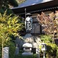 大悲願寺(あきる野市)遍照像