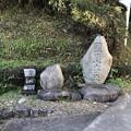 戸倉三島神社(あきる野市)参道?にて