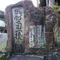 Photos: 戸倉三島神社(あきる野市)武州南一揆碑
