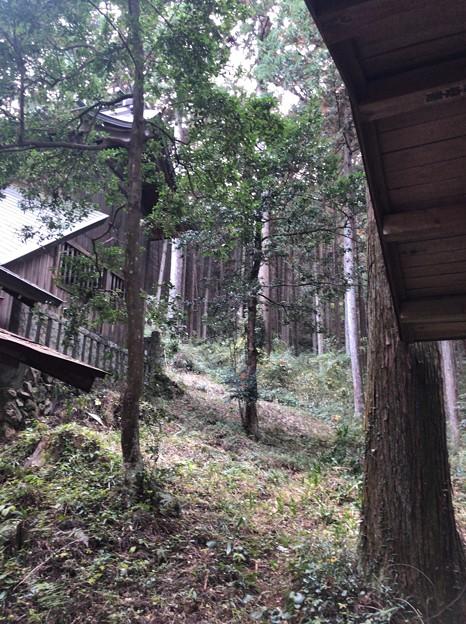 戸倉三島神社(あきる野市)戸倉城ここからも?