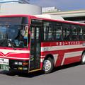 IMG_0486-e01