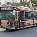 IMG_8634-e01
