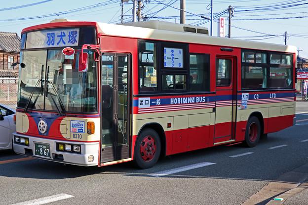 IMG_9676-e01