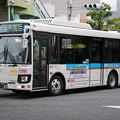 IMG_0427-e01