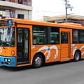 IMG_0462-e01