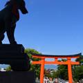 Photos: 狛狐
