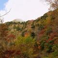 Photos: 紅葉の西黒森