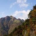 Photos: 紅葉の伊予富士