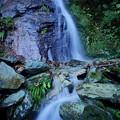 Photos: 雨後の無名瀑