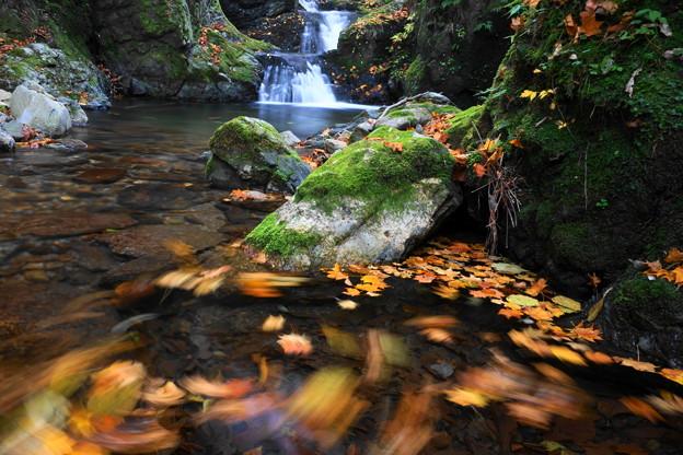 秋色渓流グルグル
