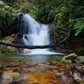 静穏の滝~花崗岩