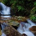静穏の滝~斜め顔