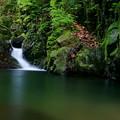 Photos: 新緑の淵