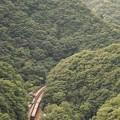 Photos: 山越え特急南風