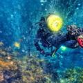 Photos: 海中洞窟へ