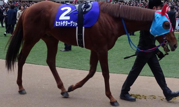 ヒットザターゲット(5回中山8日 10R 第60回グランプリ 有馬記念(GI)出走馬)