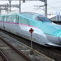 Photos: JR東日本東北新幹線E5系「なすの」