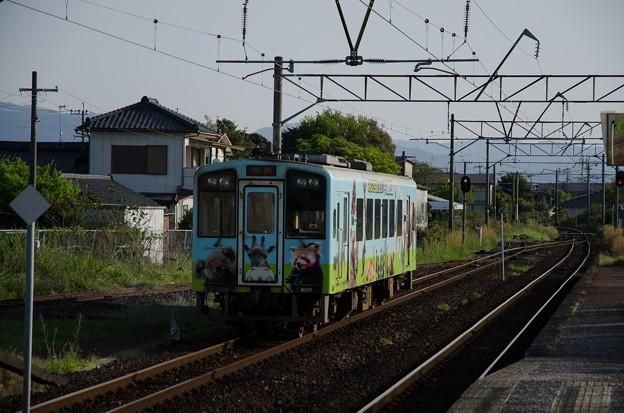 HSOR-109A-028