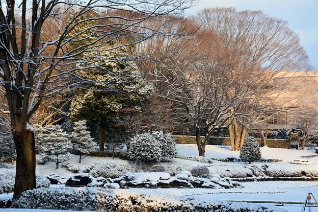 雪の公園・1