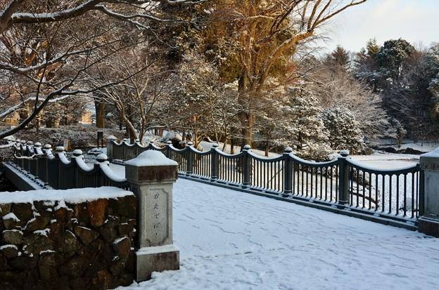 雪の公園・2