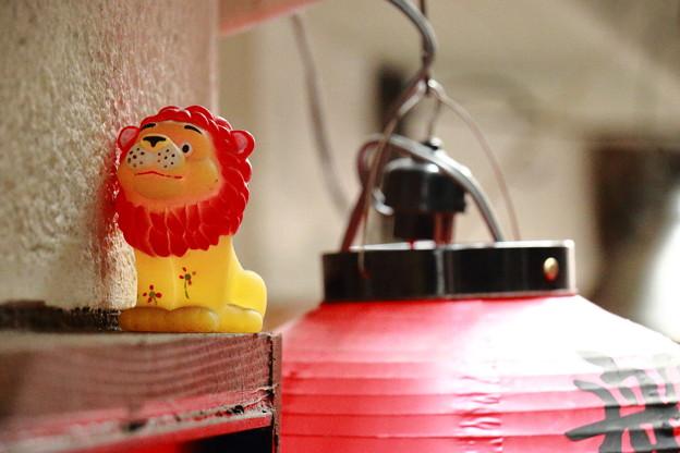ライオンとちょうちん