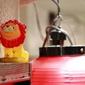 Photos: ライオンとちょうちん