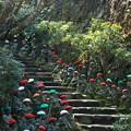 Photos: お地蔵さんの階段