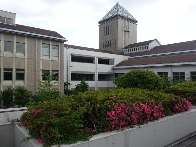 首都大学 来るの初めて\(^-^)/