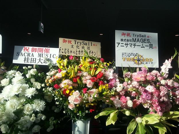 TrySail 横アリライブ こむちゃ&アニサマより花輪