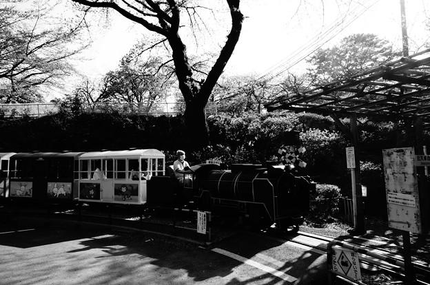 小田原城  こども遊園地