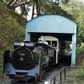 写真: 小田原城  こども遊園地 豆機関車