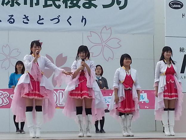 相模原桜祭り  つぶつぶ☆DOLL ステージ