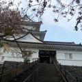 写真: いざ 小田原城に出陣~(>_<)。