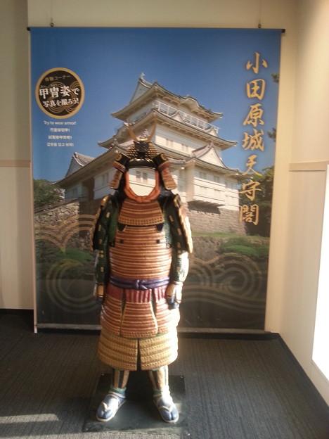 写真: 小田原城 甲冑記念撮影