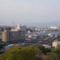 写真: 小田原城 天守閣