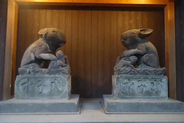 神社には兎がいっぱい