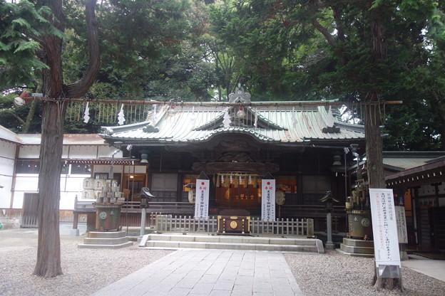 調神社(つきじんじゃ)拝殿