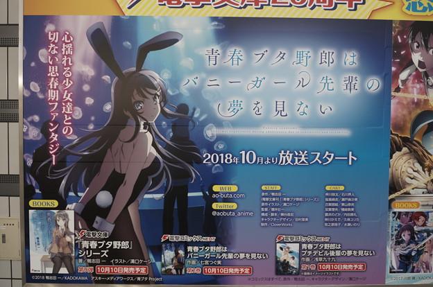 コミケ94 国際展示場駅 青春ブタ野郎はバニーガール先輩の夢を見ない 壁面広告