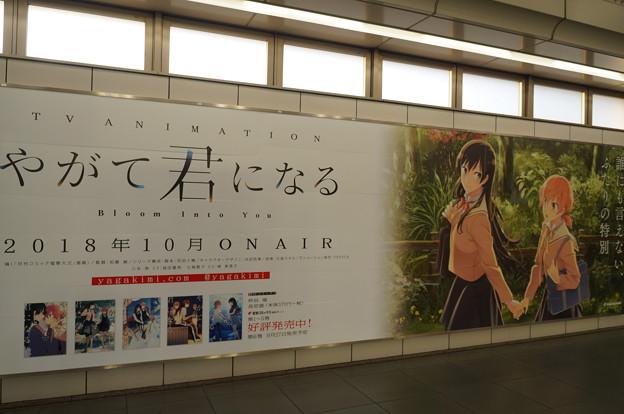 コミケ94 国際展示場駅 やがて君になる 10月より放送スタート