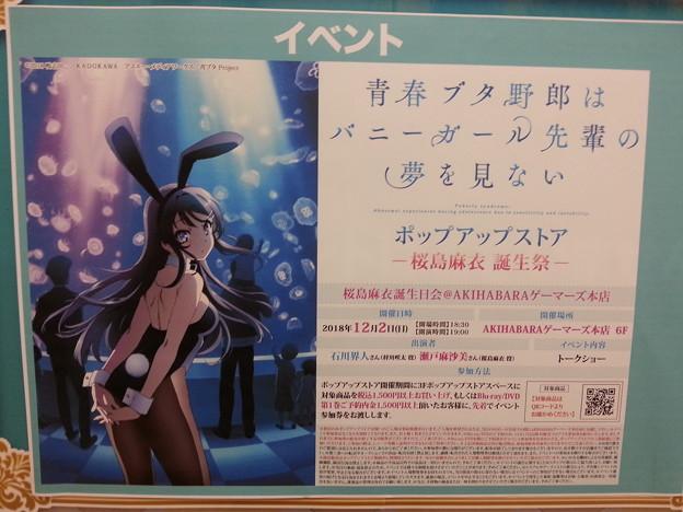 青ブタ ポップアップストア 桜島 麻衣 誕生祭
