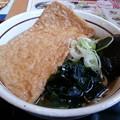 Photos: きつねが大きい\(^-^)/