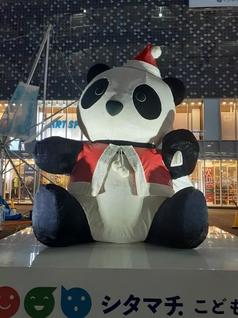 上野クリスマスパンダ