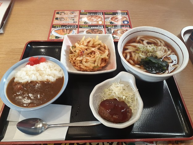 天ぷらうどん ミニカレー丼 ミニハンバーグ